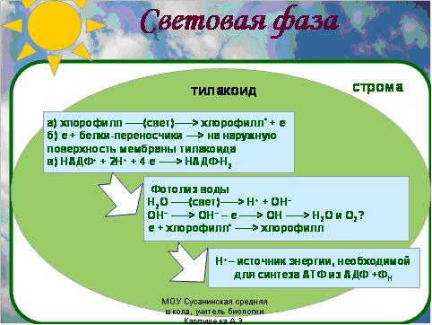 Фотосинтез презентация 9 класс