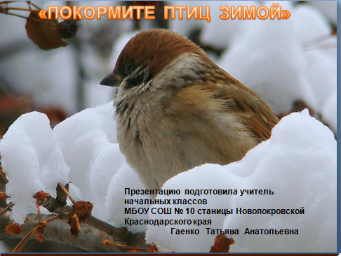 Если холодно это не значит зима стихи