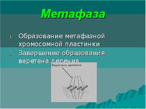 функциональная схема компьютера презентация.