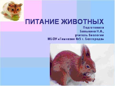 класс 6 таблица животных питание