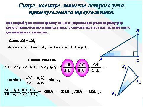 Презентация по геометрии синус, косинус острого угла