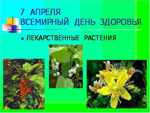 Внеклассные Мероприятия По Биологии