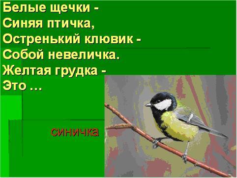 Картинки перелтных зимующих птиц