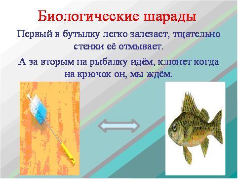 по биологии в:
