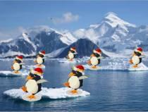 Физкультминутка Пингвины в Антарктиде