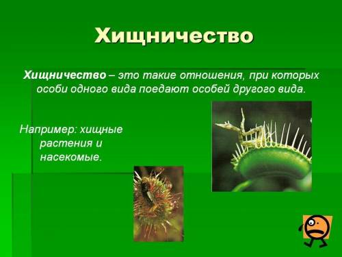 презентаций по биологий: