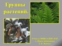 """Презентация к уроку биологии """"Группы растений"""""""
