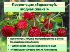Презентация для детского сада «Здравствуй, ягодная сказка!»