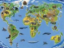 Ареалы обитания. Миграции. Закономерности размещения животных