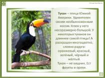 Интерактивная книжка Природа-чудесница