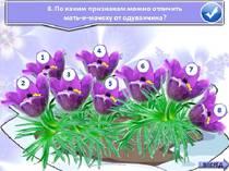 Первоцветы: Ясные глаза проталин