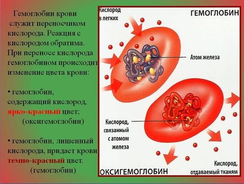презентации по химии вольфрам
