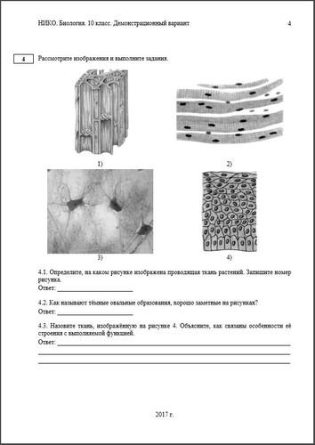 Контрольные работы по биологии Биология Диагностическая работа по биологии для 10 класса