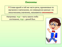"Презентация по русскому языку ""Омонимы. Паронимы""."