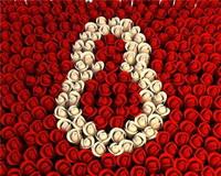Сценарий праздника к 8 Марта «О самой чудесной на свете, о маме своей говорю»